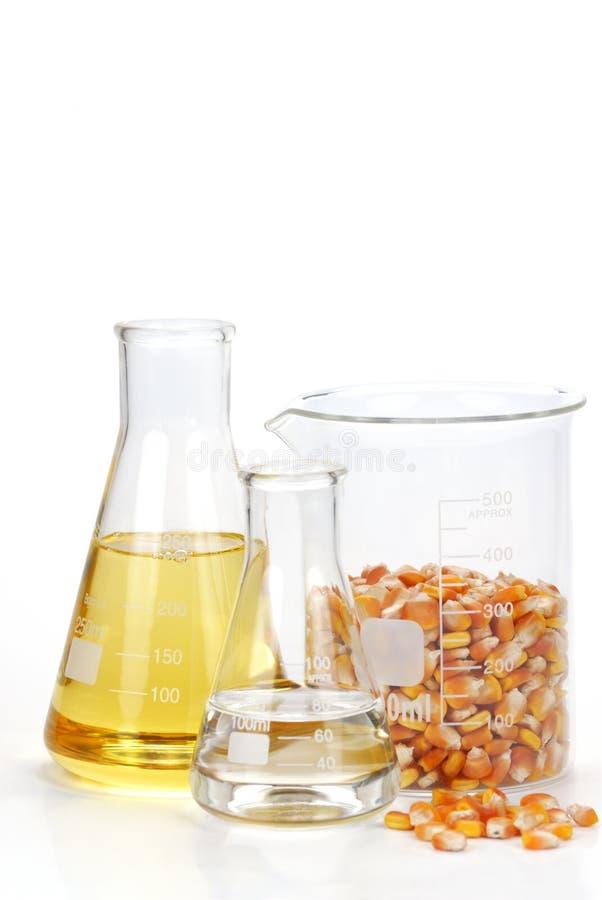 Gérmenes del maíz con sus productos imagen de archivo libre de regalías