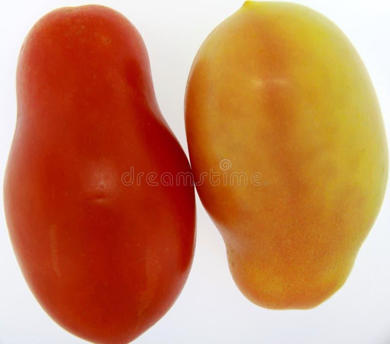 Gêmeos de Tomatoe fotografia de stock