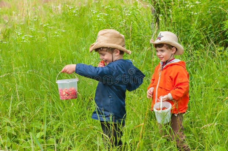 Gêmeos no prado fotografia de stock