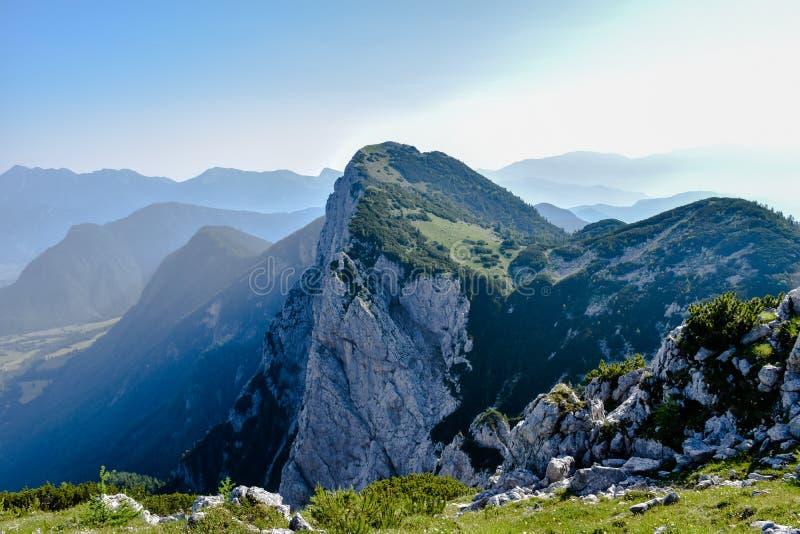 góra zdjęcie stock