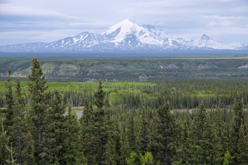 Góra Blackburn Alaska zdjęcie stock