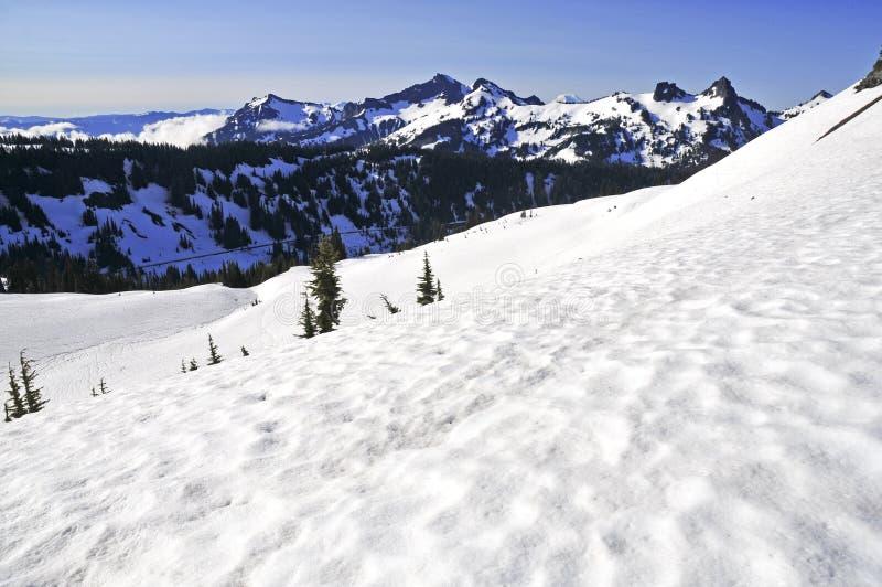 Góra Dżdżysta i Północne Kaskadowe góry, stan washington zdjęcia stock