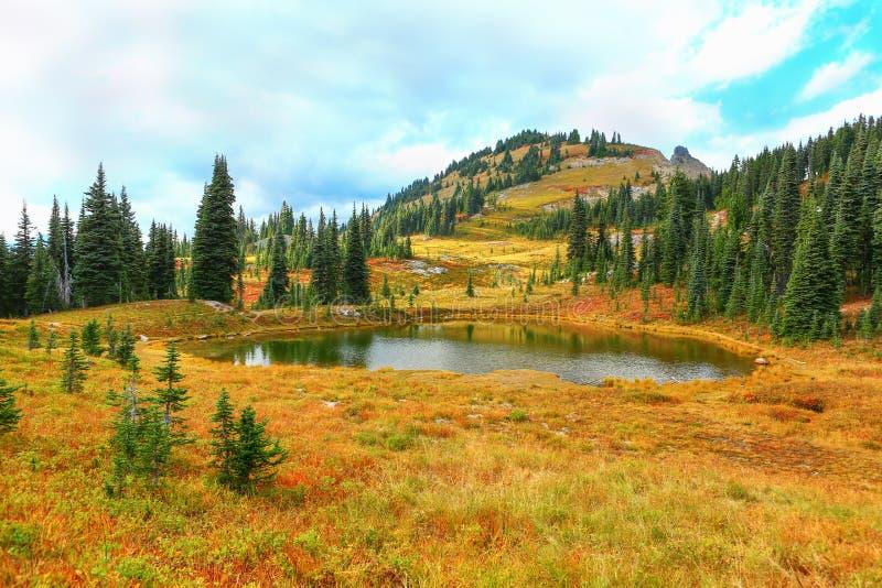 Góra Dżdżysta, Waszyngtoński, raju ślad zdjęcia royalty free