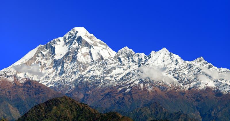 Góra Dhaulagiri zdjęcia stock