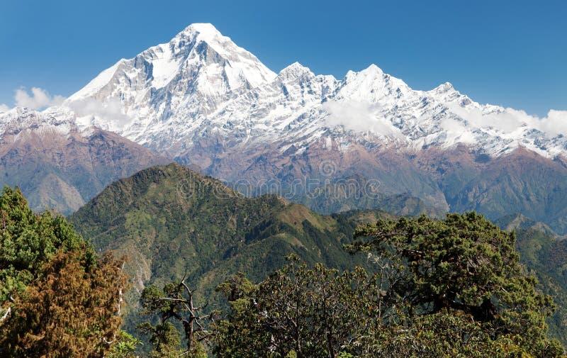 Góra Dhaulagiri, Nepal - obrazy stock