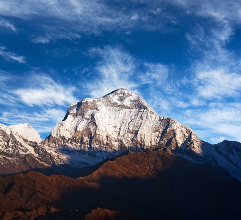 Góra Dhaulagiri, Nepal zdjęcie royalty free