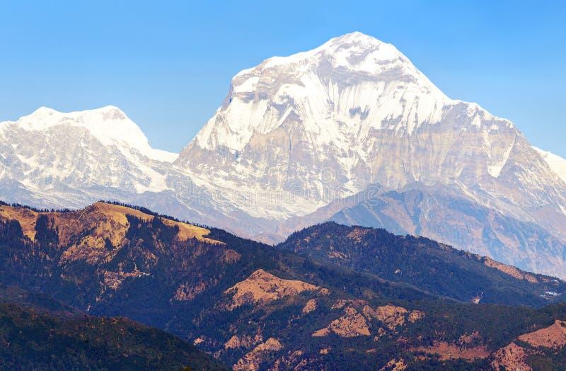 Góra Dhaulagiri, Nepal himalajów góry zdjęcie stock