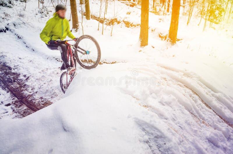 Góra jechać na rowerze w śnieżnym lesie zdjęcie royalty free