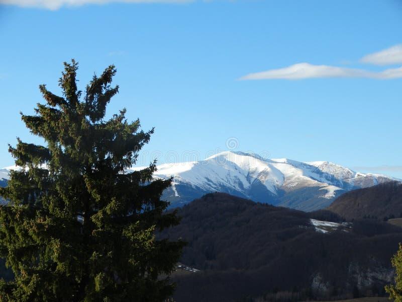 Góra krajobraz 09 zdjęcia stock