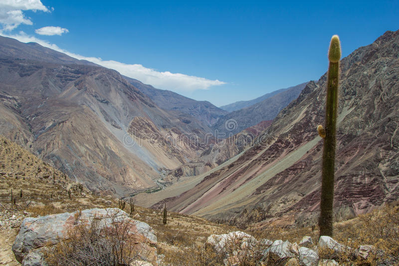 Góra krajobraz jar Cotahuasi obraz royalty free