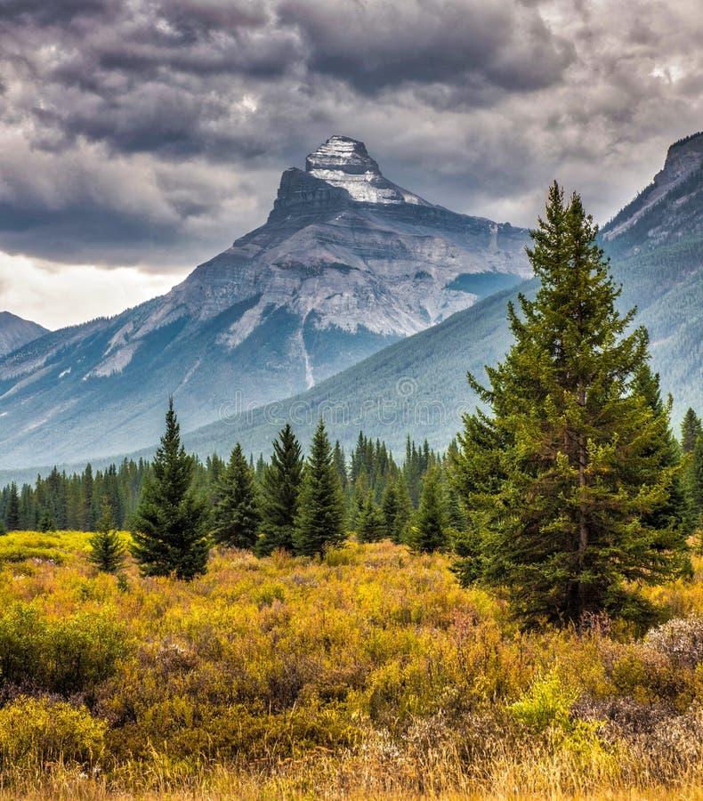Góra krajobraz, Kanadyjskie Skaliste góry obrazy royalty free