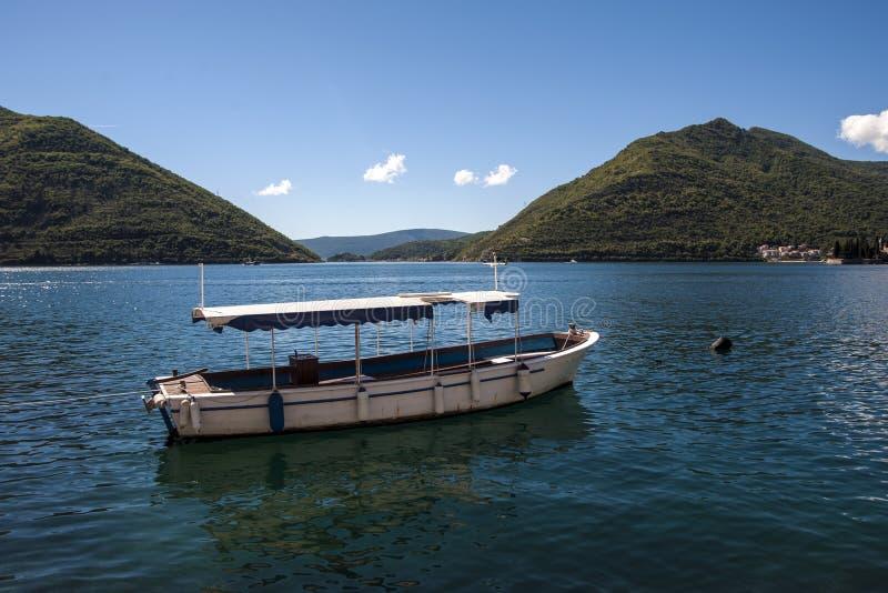 Góra krajobraz Kotor zatoka, Montenegro zdjęcia stock