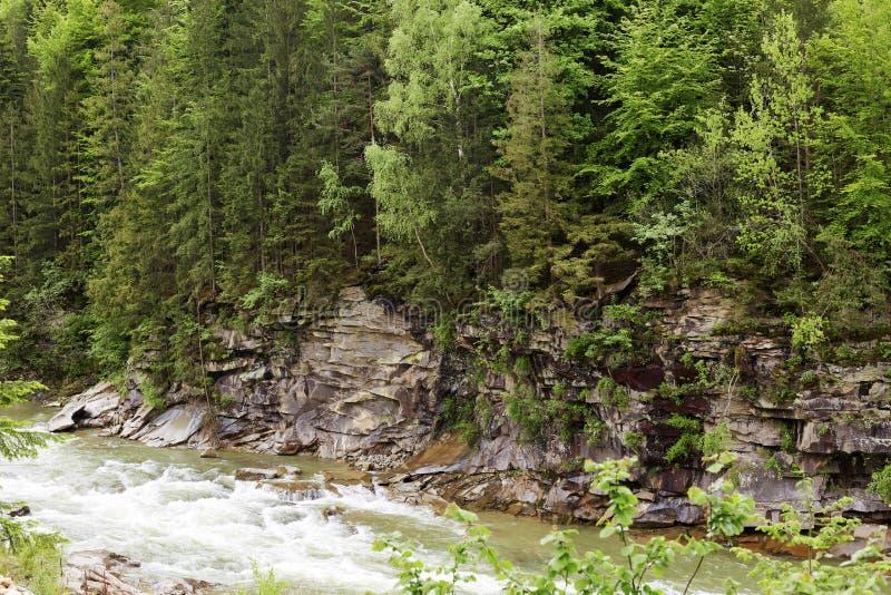 G?ra krajobraz, las, zieleni drzewa, pi?kna wygina si? rzeka, ekscytuje scenary, ciekawego miejsce dla, zdjęcia stock