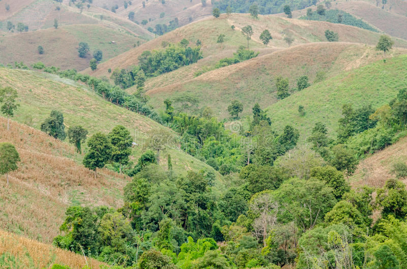 Góra krajobraz w Tajlandia fotografia royalty free