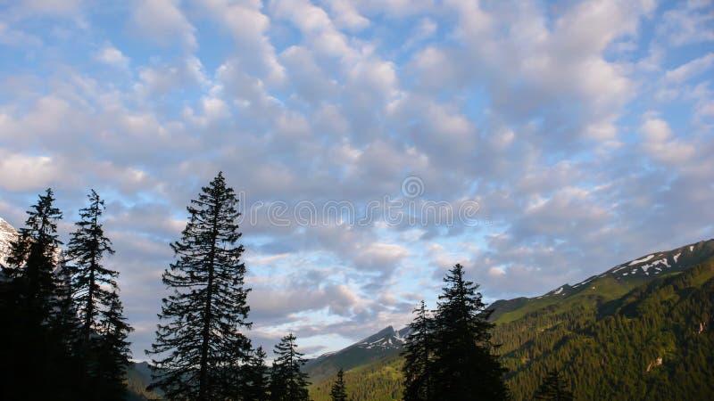 Góra krajobraz w wczesnym wieczór w środkowych Szwajcarskich Alps blisko Interlaken obrazy stock