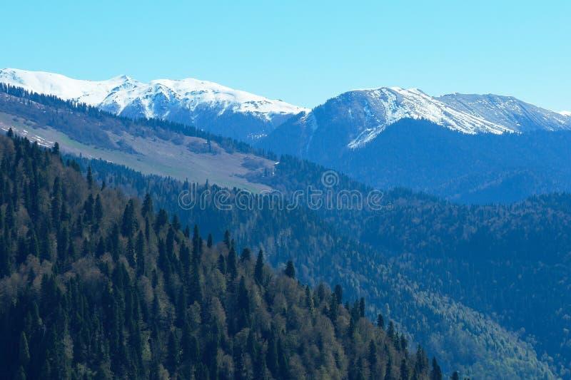 Góra krajobraz z kolorowym lasem i wysokość nakrywający szczyty Kaukaz gór piękny zadziwiający dzień zdjęcie stock