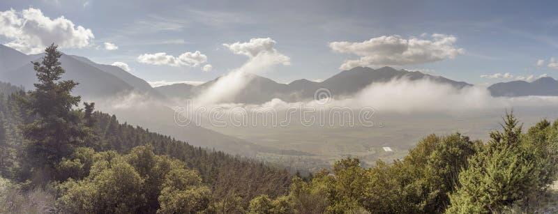 Góra krajobraz z mgłą i świerczyną zdjęcia stock