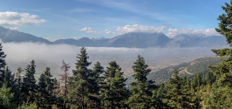 Góra krajobraz z mgłą i jodłami zdjęcia stock