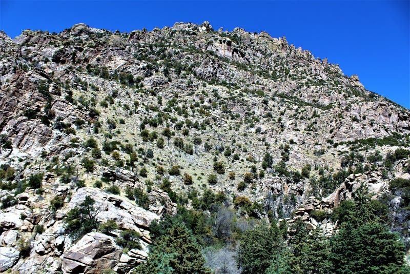Góra Lemmon, Tucson, Arizona, Stany Zjednoczone fotografia royalty free