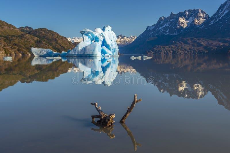 Góra lodowa i Nieżywy Gałęziasty odbicie, Patagonia, Chile obrazy stock