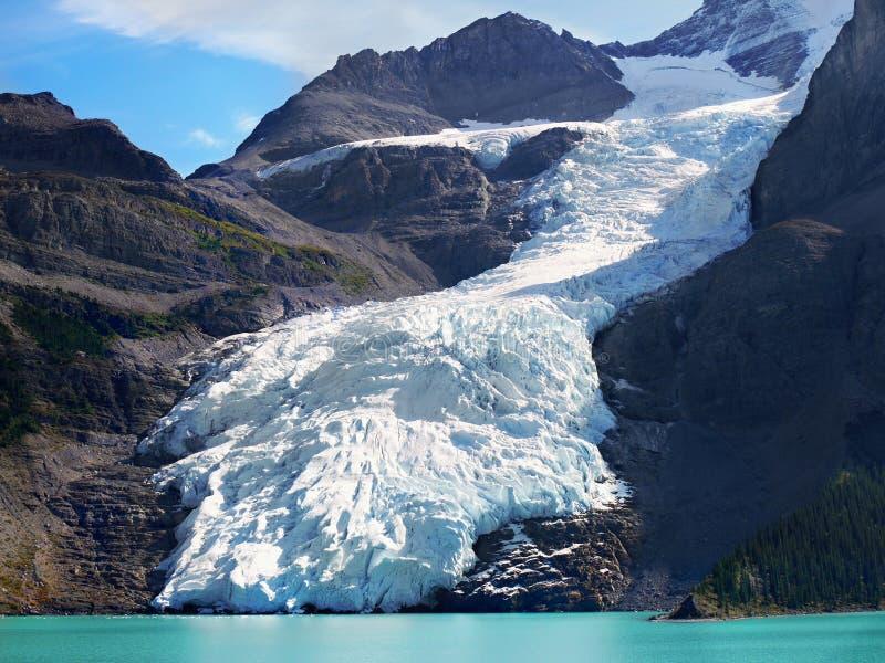 Góra lodowa jezioro, lodowiec góry Robson park, Kanadyjskie Skaliste góry zdjęcia royalty free