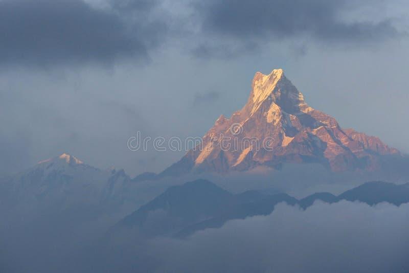 Góra Machhapuchchhre w wieczór słońca miękkim świetle zdjęcia royalty free