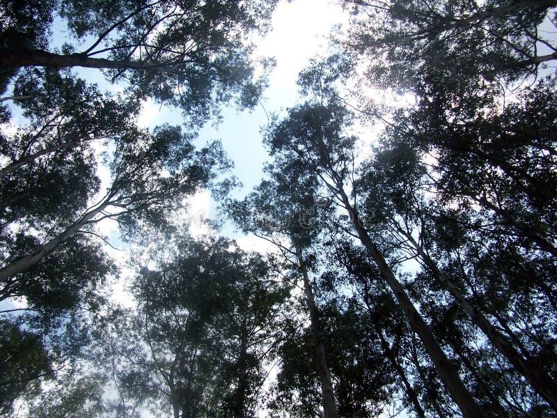 góra niebo obrazy stock