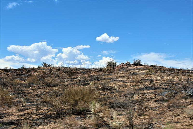Góra ogień przy Bartlett Jeziornym rezerwuarem, Tonto las państwowy, Maricopa okręg administracyjny, stan Arizona, Stany Zjednocz zdjęcie royalty free