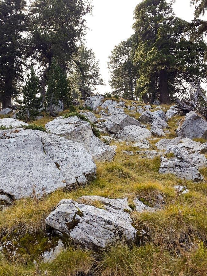 Góra Olympus w jesieni zdjęcia royalty free