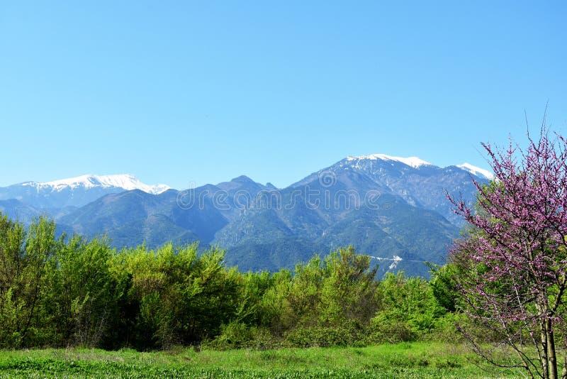 Góra Olympus, wysoka góra w Grecja zdjęcie royalty free