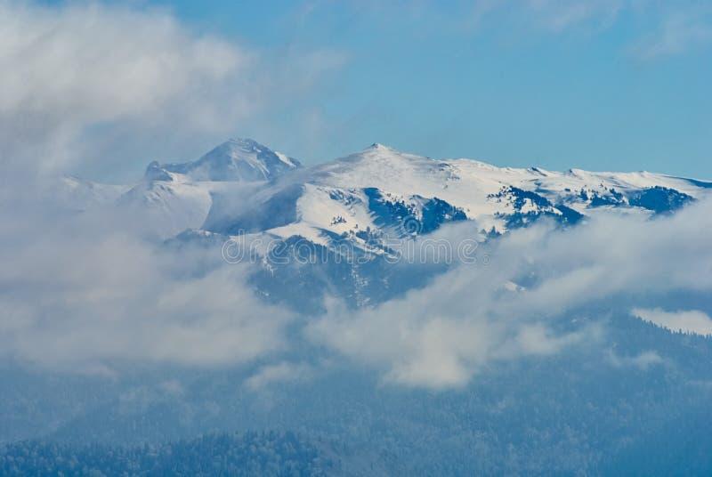 góra panoramiczny widok W pierwszoplanowych chmurach w środkowej śnieżystej zimie lasowy Lago-Naki magistrala Kaukaska obraz royalty free