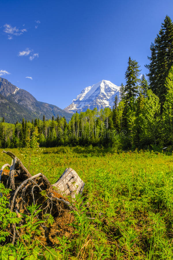 Góra Robson obraz stock