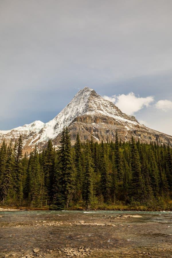Góra Robson otaczający drzewami i chmurami zdjęcie stock