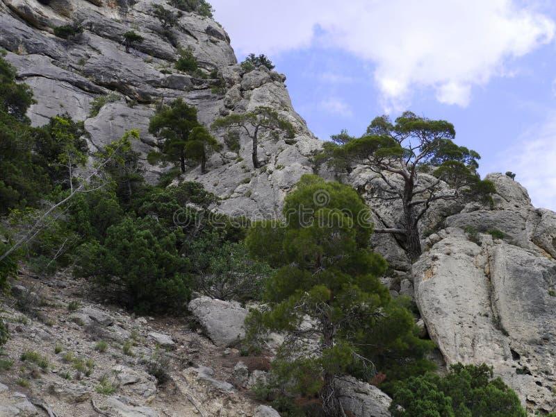 Góra Sokol w Novy Svet obrazy stock