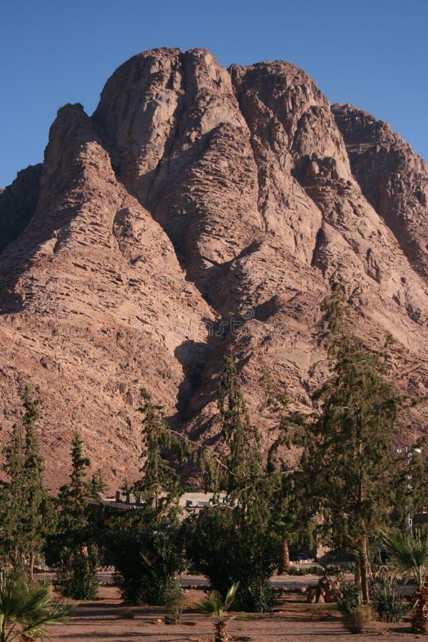 góra synaj zdjęcia stock