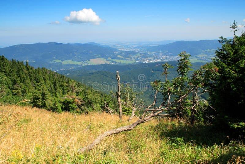 góra vista zdjęcia royalty free
