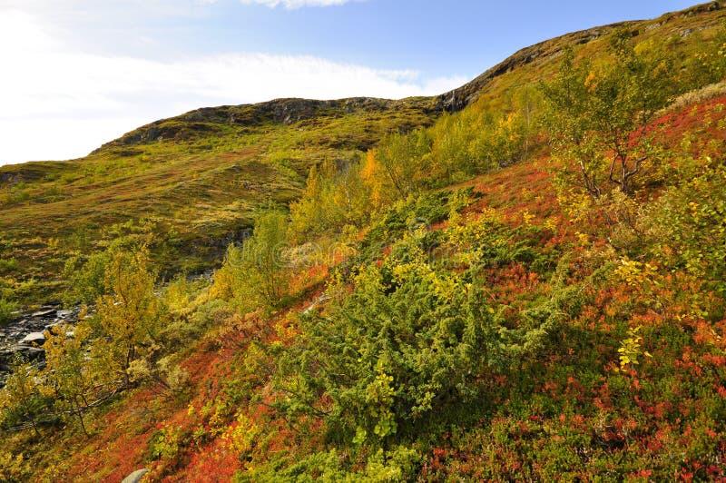 Góra w jesieni obrazy stock