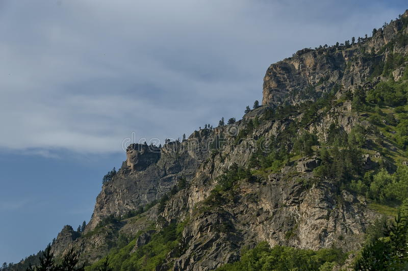 Góra wierzchołek orła ` s skała przerastająca z iglastym lasem i halizną Rila góra fotografia stock