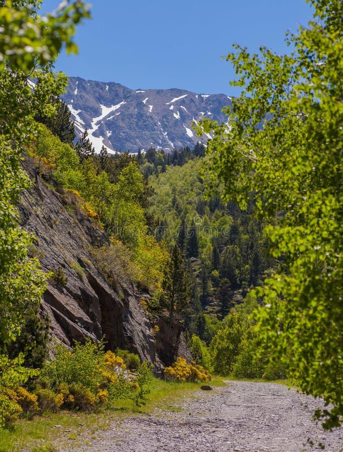 Góra wycieczkuje w Vall De Sorteny Andorra zdjęcia royalty free