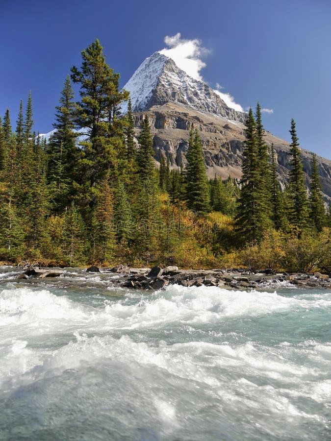 Góra z lodowem i dziką rzeką zdjęcie stock
