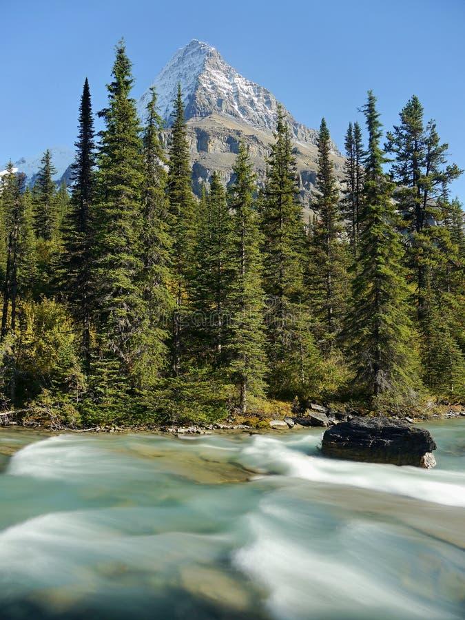 Góra z lodowem i dziką rzeką fotografia stock