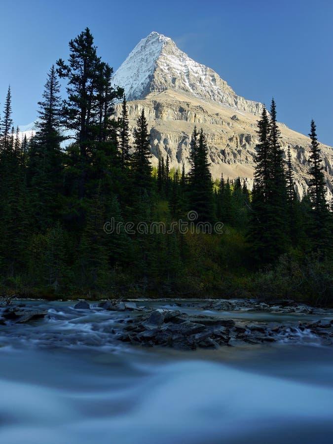 Góra z lodowem i dziką rzeką zdjęcia stock