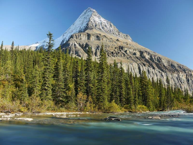Góra z lodowem i dziką rzeką zdjęcie royalty free