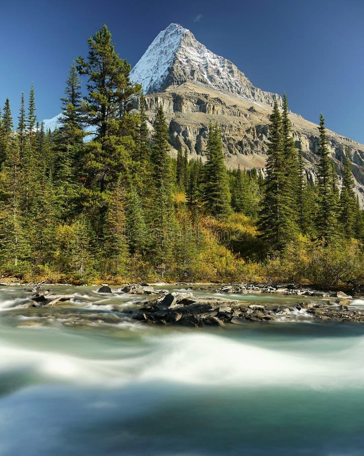 Góra z lodowem i dziką rzeką fotografia royalty free