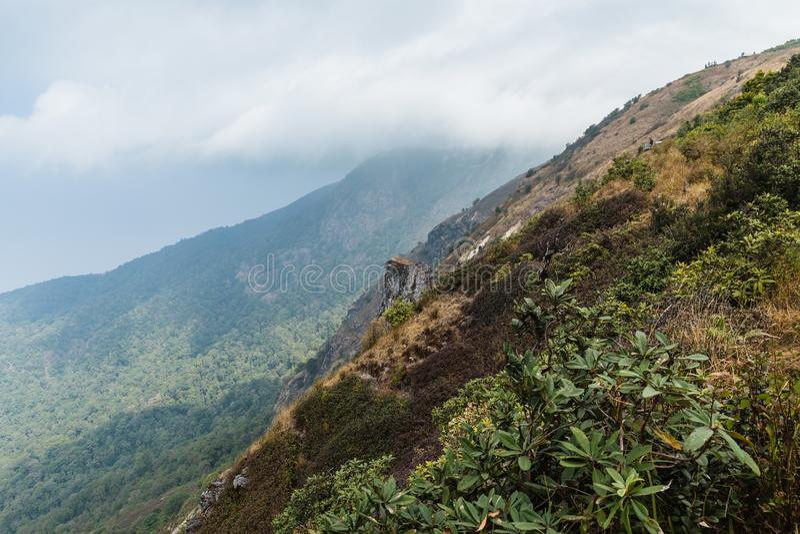 Góra z złotą trawą wzdłuż sposobu z starymi bel ogrodzeniami, chodzeniem i chmurnieje przy Kew Mae niecki Halną granią w Chiang M zdjęcia stock