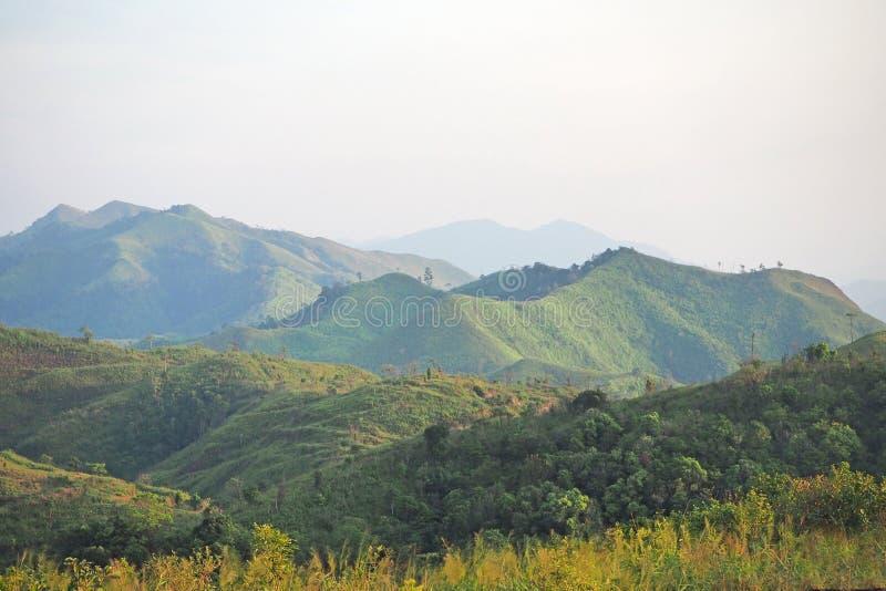 Góra z zieloną trawą w ranku zdjęcia stock