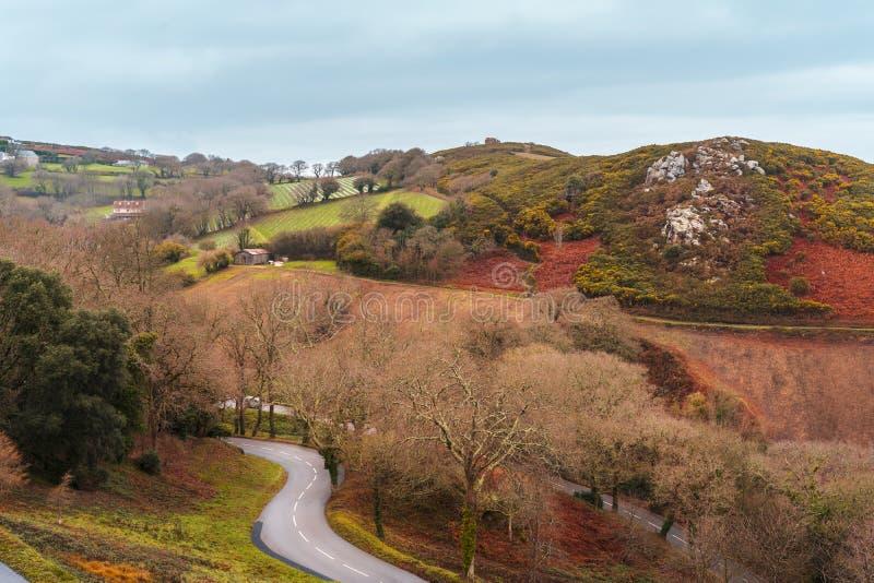 Górkowaty krajobraz i droga w bydle, channel islands fotografia royalty free