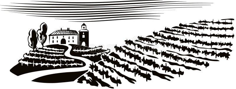 Górkowaty krajobraz, kultywujący winnicy ilustracja wektor