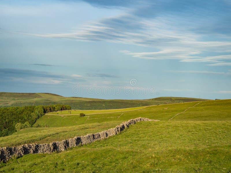 Górkowaty krajobraz w Szczytowym okręgu w UK z kamiennymi ogrodzeniami obraz royalty free