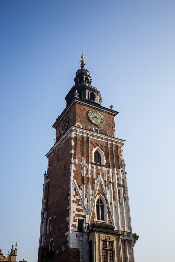 Górna część urzędu miasta zegarowy wierza w Krakow z przyrodnią księżyc w wieczór ptaków i nieba latać fotografia stock